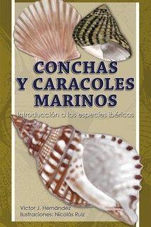 CONCHAS Y CARACOLES MARINOS