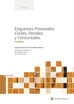 ESQUEMAS PROCESALES CIVILES, PENALES Y CONCURSALES (7.ª EDICIÓN)