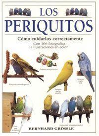 LOS PERIQUITOS : CÓMO CUIDARLOS CORRECTAMENTE
