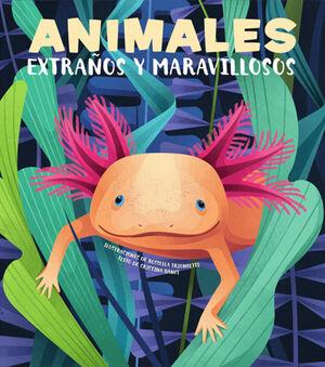 ANIMALES EXTRAÑOS Y MARAVILLOSOS    (VVKIDS)