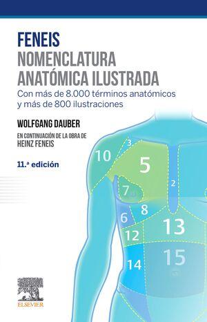 FENEIS. NOMENCLATURA ANATOMICA ILUSTRADA 6ªED.