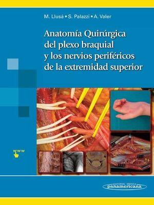 ANATOMIA QUIRURGICA DEL PLEXO BRAQUIAL Y DE LOS NERVIOS PERIFERICOS